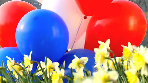 Girl and Balloons Stock Video Footage