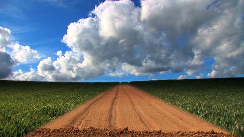 Dramatic time-lapse clouds over a field of growing wheat Footage