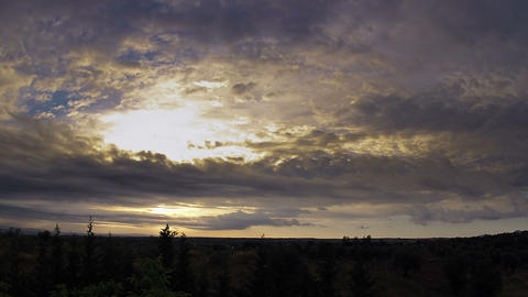 Olive grove, dramatic sky and sunset. Timelapse Stock Video Footage