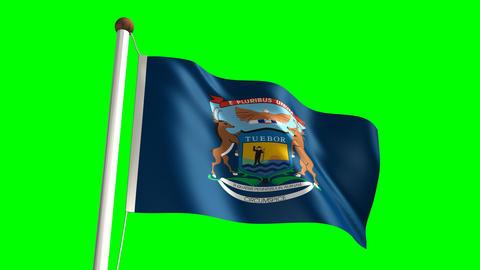 Michigan flag Stock Video Footage