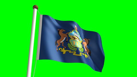 Pennsylvania flag Stock Video Footage