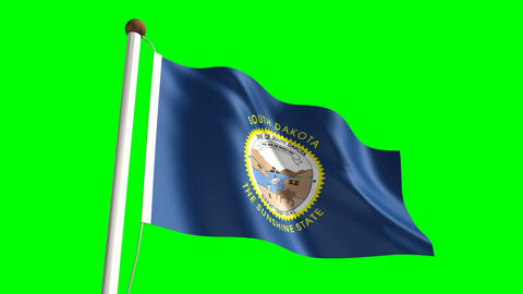 South Dakota flag Stock Video Footage