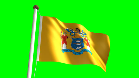 New Jersey flag Stock Video Footage