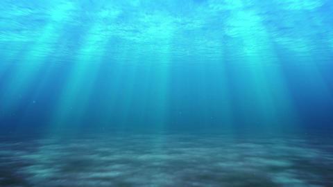 sea swim clear Stock Video Footage