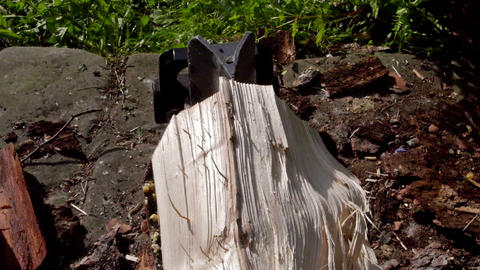 Cracking log of wood in the machine - top view Stock Video Footage