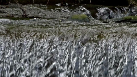 Threshold of a stream of water Stock Video Footage