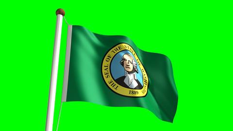 Washington flag Stock Video Footage