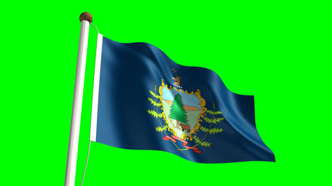 Vermont flag Stock Video Footage