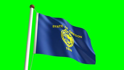Oregon flag Stock Video Footage