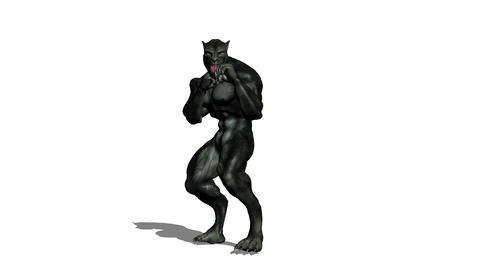 ボクシング Animation