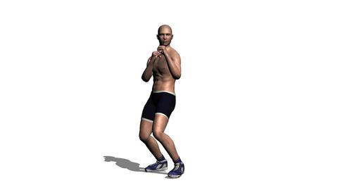 ボクシング Stock Video Footage