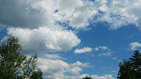 Time lapse of blue sky with cumulus clouds and tre Footage