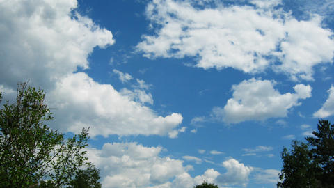 Time lapse of blue sky with cumulus clouds and tre Stock Video Footage