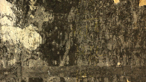 Removing wallpaper from the wall Stock Video Footage