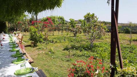 garden Footage