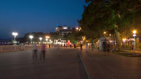 Gelendzhik city walk in the night hyperlapse Stock Video Footage