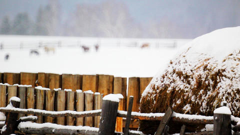 Haystack on the backdrop of snow-covered field wit Stock Video Footage