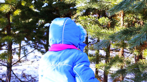 Little girl walking outdoor in the winter pine for Footage