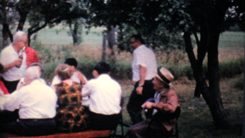 Company Work Picnic 1962 Vintage 8mm film Footage