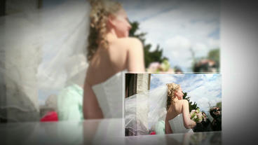 Wedding 033 stock footage