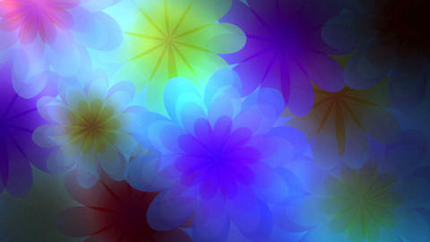 Flower748156778 Animation