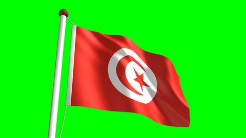 Tunisia flag Stock Video Footage