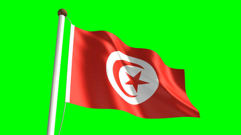 Tunisia flag Animation