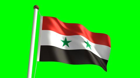 Syria flag Stock Video Footage