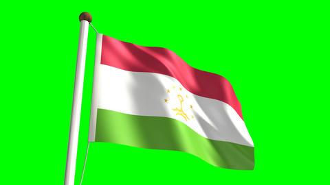 Tajikistan flag (seamless & green screen) Stock Video Footage