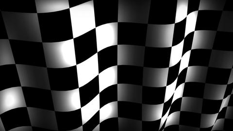Checkerflag stock footage