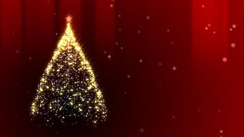 Chiristmas Tree Stock Video Footage