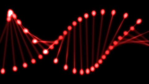 DNA Animation
