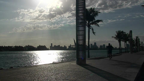 A man jogs by the Mami skyline Stock Video Footage
