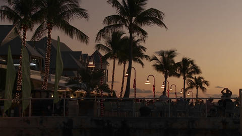 An inviting shot of a palm lined tropical resort h Stock Video Footage