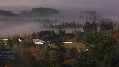 Fog hangs over the wine country of Oregon Stock Video Footage