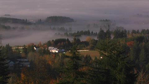 Fog hangs over the wine country of Oregon Footage