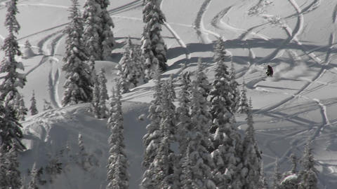 A skier skis through deep snow in the backcountry Stock Video Footage