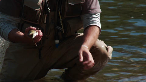 A fisherman practices catch and release Stock Video Footage