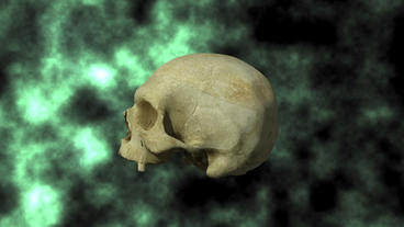 Actual Human Skull, 3D Scan, rotating on BG 24P Stock Video Footage