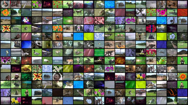 Video Wall Element 18x13 24P Stock Video Footage