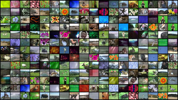 Video Wall Element 18x13 30P Stock Video Footage