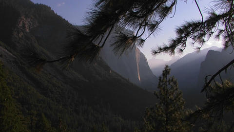 Pine trees stand at the edge of a hillside overloo Stock Video Footage
