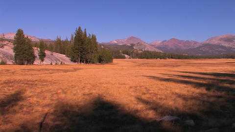 Tuolumne Meadows extends towards the mountains at Stock Video Footage