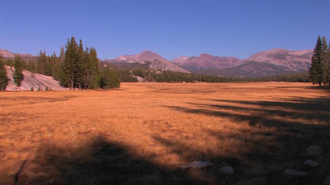 Tuolumne Meadows extends towards the mountains at  Footage