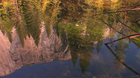 Trees reflect in a mountain lake in Yosemite Natio Stock Video Footage