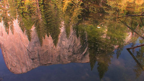 Trees reflect in a mountain lake in Yosemite Natio Footage