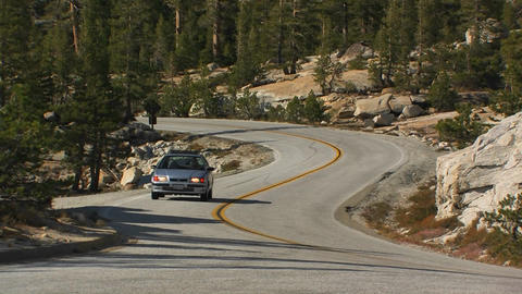 A car drives on a winding road through a pine fore Footage