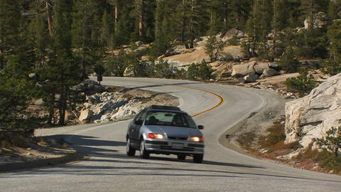 A car drives on a winding road through a pine fore Stock Video Footage