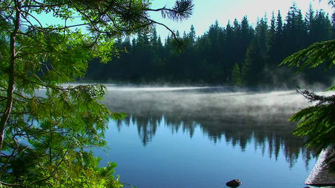 Steam rises from Trillium Lake which is surrounded Footage