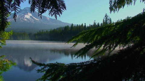 Steam rises from Trillium Lake which is surrounded Stock Video Footage